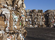 Cardboard Posters - Recycling Facility Poster by Paul Edmondson