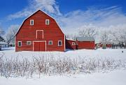 Farming Barns Photo Framed Prints - Red Barn, Winter, Grande Pointe Framed Print by Dave Reede
