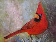 Barbara Haviland Framed Prints - Red Cardinal Framed Print by Barbara Haviland