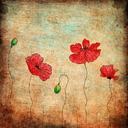 Drawn Mixed Media Prints - Red Poppies On Grunge Background Print by Anna Abramska