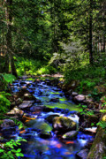 Water Prints - Reeder Creek II Print by David Patterson