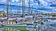 Yachts Prints - Reflections Print by Douglas Barnard