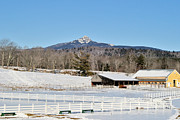 Mt Chocorua Posters - Remick Farm Winter Poster by Larry Landolfi