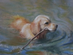 Retriever Pastels Posters - Retrieving Poster by Pamela Pretty