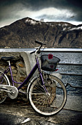Deserted Photos - Retro Bike by Joana Kruse
