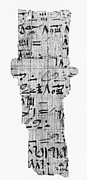 Papyrus Photos - Rhind Papyrus by Photo Researchers