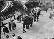 Slide Prints - Riding An Elephant In Coney Island, New Print by Everett