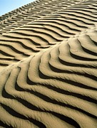 Arid Life Prints - Rippled Sand Dunes Print by Tek Image