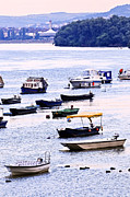 Calm Water Metal Prints - River boats on Danube Metal Print by Elena Elisseeva