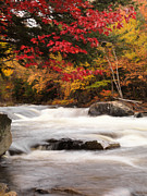 Fall River Scenes Prints - River Rapids Fall Nature Scenery Print by Oleksiy Maksymenko