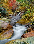 Fall Photography Posters - Rock Creek Poster by Tim Reaves