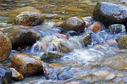 Cascading Water Prints - Rocks in a Stream Print by Sharon  Talson