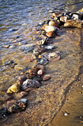 Great Lakes Photos - Rocks in water by Elena Elisseeva