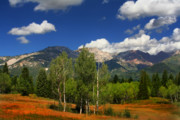 Freed Photo Prints - Rocky Mountains Print by Mark Smith