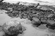 Rocky Shore Print by Merv Scoble
