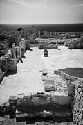 Republic Prints - Roman Forum Agora At Kourion Republic Of Cyprus Europe Print by Joe Fox
