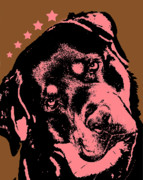 Animal Mixed Media Metal Prints - Rottweiler  Metal Print by Dean Russo