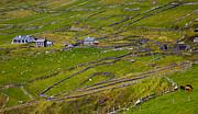 Rural Landscape On Dingle Peninsula Print by Gabriela Insuratelu