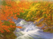 Darlene Agner - Rushing Stream