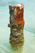 Reddish Flaking Iron Oxide Posters - Rusted Dock Pier of the Caribbean VII Poster by David Letts