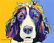 Blue Yellow Framed Prints - Sadie Framed Print by Pat Saunders-White