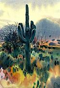 Sonoran Desert Prints - Saguaro Print by Donald Maier