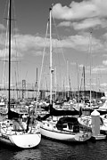 Black And White Photographs Photos - Sail Boats at San Francisco China Basin Pier 42 With The Bay Bridge in The Background . 7D7685 by Wingsdomain Art and Photography