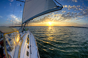 Sailing Sunset Charleston Sc Beneteau 49 Print by Dustin K Ryan