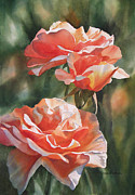 Colored Flowers Painting Posters - Salmon Colored Roses Poster by Sharon Freeman