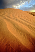 Sand Patterns Metal Prints - Sand dune at Great Sand Hills in scenic Saskatchewan Metal Print by Mark Duffy