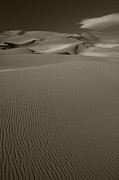 Sand Dunes National Park Prints - Sand Dunes Print by Timothy Johnson