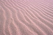 Sand Dune Photos - Sand Ripples by John Foxx