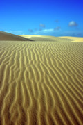 Sand Dunes Metal Prints - Sandy desert Metal Print by MotHaiBaPhoto Prints