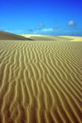 Sandy Desert Print by MotHaiBaPhoto Prints