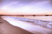 Central Coast Photos - Santa Barbara Pier by Ariane Moshayedi