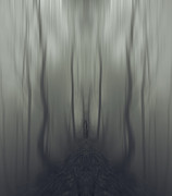 Spooky Trees Framed Prints - Sarah Framed Print by James Ingham