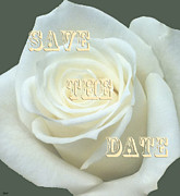 Formal Mixed Media Posters - Save The Date Card Poster by Debra     Vatalaro