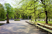 Park Benches Photos - Saxon Garden in Warsaw by Artur Bogacki