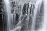 Danum Valley Conservation Area Prints - Scenic Waterfall In Borneo Rain Forest Print by Tim Laman