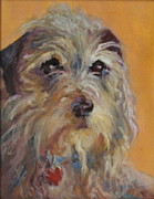 Domestic Dogs Painting Prints - Scruffy Print by B Rossitto