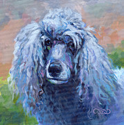 Poodle Paintings - Shadow by Kimberly Santini