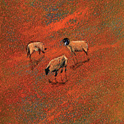 English Paintings - Sheep in copper coloured landscape by Neil McBride