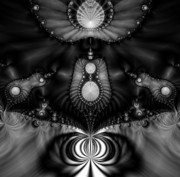 Black White And Sepia Art - Shell Realm by Devalyn Marshall