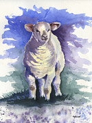 Marsha Elliott - Shellies Lamb