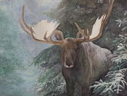 North American Wildlife Art - Sheltered By The Forest by Nonie Wideman