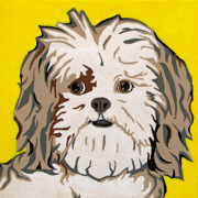 Dogs Metal Prints - Shih tzu Metal Print by Slade Roberts
