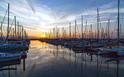 Sunset Photos - Shilshole Tranquility by Mike Reid