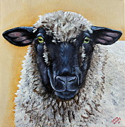 Sheep Paintings - Shirley by Laura Carey