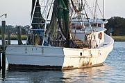 Shrimp Boat Art - Shrimp Boat by Dustin K Ryan