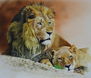 Lioness Painting Prints - Siesta des Lions Print by Julian Wheat